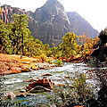River In Zion National Park by Duane McCullough