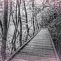 River Of Dreams by Debra and Dave Vanderlaan