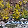 River Rapids In Zion by Jon Berghoff