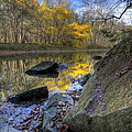 River Reflection In Fall by David Dufresne