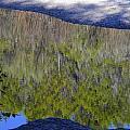 River Reflection by Ricky Cerda