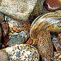 River Rocks 11 by Duane McCullough