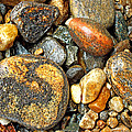 River Rocks 16 by Duane McCullough