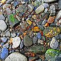 River Rocks 22 by Duane McCullough