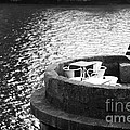 River Seat by John Rizzuto