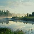 Summer Serenity by Lorraine Keil