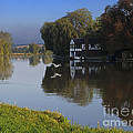 River Thames At Cookham by Louise Heusinkveld