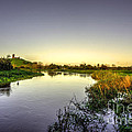River Tone At Burrowbridge by Rob Hawkins