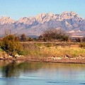 River View Mesilla Panorama by Kurt Van Wagner