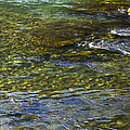 River Water 2 by Belinda Greb
