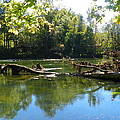 Rivers Edge by Lisa Wooten