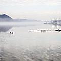 Rivers Mist by Lee Wellman