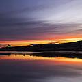 Riverscape by Angus Hooper Iii