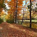 Riverside Colors 5 by Gene Cyr