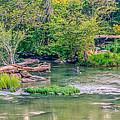 Riverwalk Park II by Rob Sellers