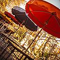 Riverwalk Umbrellas by Melinda Ledsome