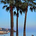 Riviera Romance by Inge Johnsson