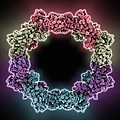 Rna Interference Viral Suppressor by Science Photo Library