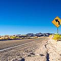 Road In The Desert #2 by Alyaksandr Stzhalkouski