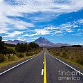 Road Leading To Active Volcanoe Mt Ngauruhoe Nz by Stephan Pietzko