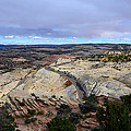Road Over Slick Rock by David Lee Thompson