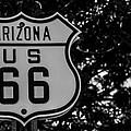 Road Sign 2 by Angus Hooper Iii