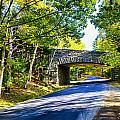 Road Through Acadia by John Daly