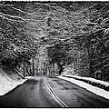 Road Through Dark Snowy Forest E93 by Wendell Franks