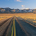 Road Through Desert by Panoramic Images