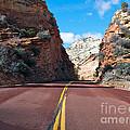 Road Through Zion National Park by Toula Mavridou-Messer
