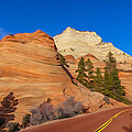 Road Through Zion Np by Tom and Pat Cory