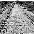 Road To Everywhere Bw by Tim Richards