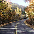 Road To Fall by Robert Allen