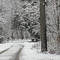 Road To Grandma's House by Stephanie Irvin