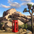 Phone Booth In Joshua Tree by Snake Jagger