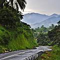 Roads by Manu G