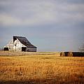 Roadside Barn by Angie Harris