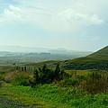 Roadside Ranch Lands by Lori Seaman