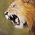 Roar by Barry BLAKE