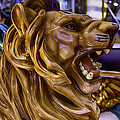 Roaring Lion Ride by Garry Gay
