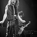 Robert Plant And Jimmy Page by Timothy Bischoff