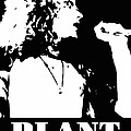 Robert Plant Black And White Pop Art by David G Paul