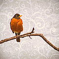 Robin With Damask Background by Peggy Collins