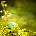 Robin's Egg On Moss by Peggy Collins