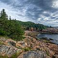 Rock And Pines Of Acadia by At Lands End Photography