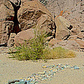 Rock Arrow And Terry Directing Into Ladder Canyon From Big Painted Canyon Trail In Mecca Hills-ca  by Ruth Hager