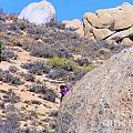 Rock Climbing by Marilyn Diaz