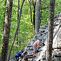 Rock Climbing Youths by Maria Urso
