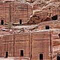 Rock Cut Tombs On The Street Of Facades In Petra Jordan by Robert Preston