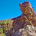 Rock Formation Higher Than Fan Palms Along Lower Palm Canyon Trail In Indian Canyons Near Palm Sprin by Ruth Hager
